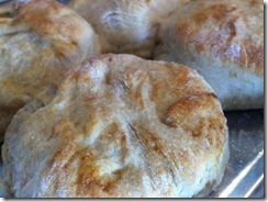 sourdoughbiscuits